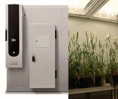 pflanzenwuchsschrank-aralab-fitoclima-28000-hp-single-tier-eine-ebene